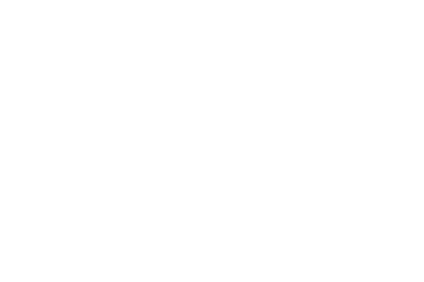 LOGO-BellaireLandscape