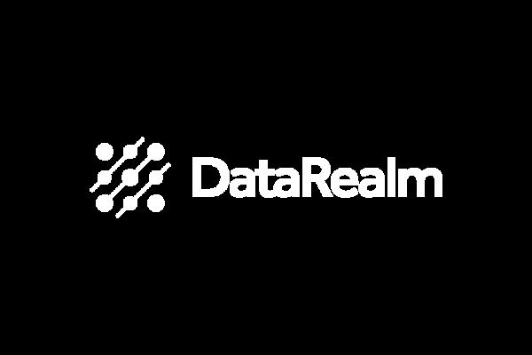 LOGO-DataRealm